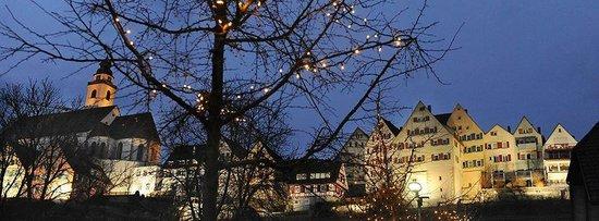 Hotel-Restaurant Kaiser: Horb am Nekar