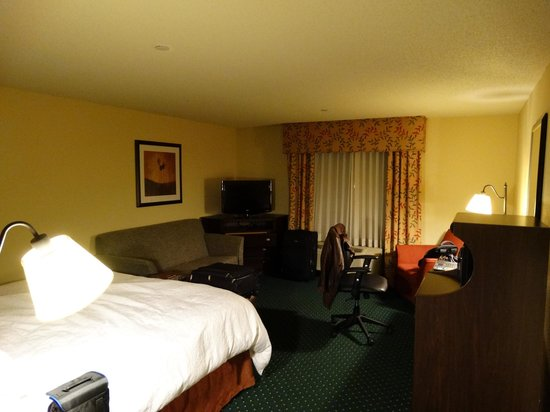 Hampton Inn Garden City: Room View