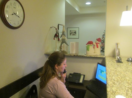 Hotel Meg: Rouzan at reception desk