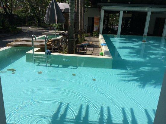 The Paragon Inn: Pool Area