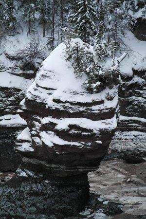 Hopewell Rocks: sous la neige