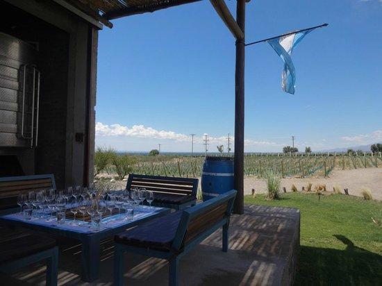 Ampora Wine Tours : Uco