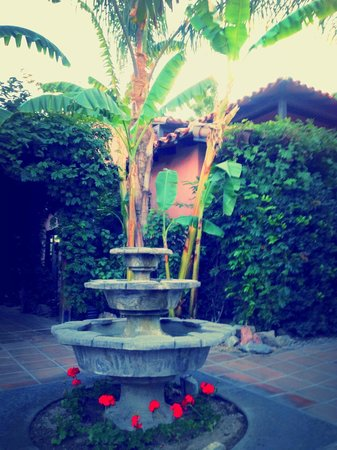 Hotel California: Fountain by the pool