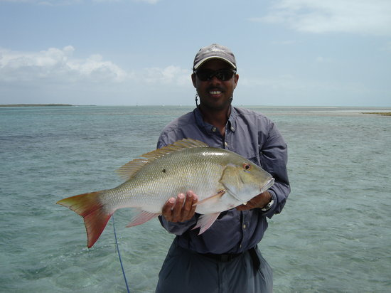 Tranquillity On The Bay Resort: Fishing in Crooked Island