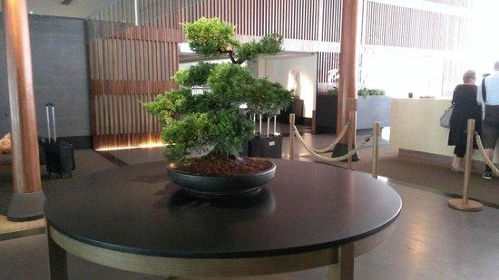 Silks Place Taroko: bonsai in lobby