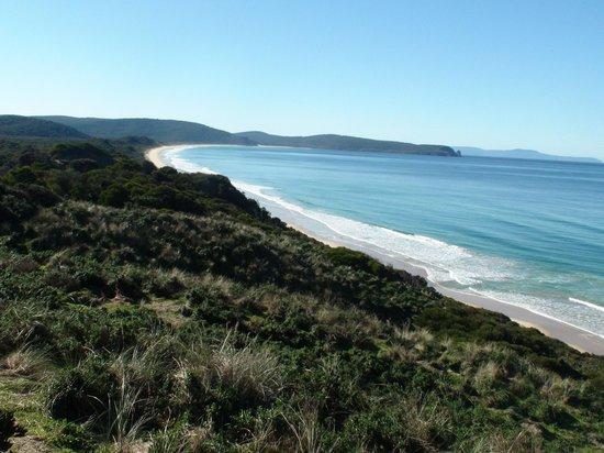 South Bruny National Park : South Tasman Sea