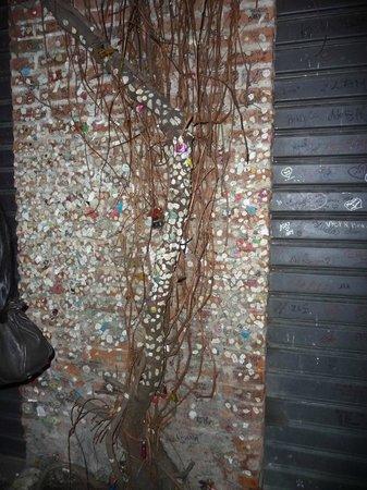 Casa di Giulietta: Un arbre recouvert de chewing collés où sont gravées les initiales de ceux qui les ont collés