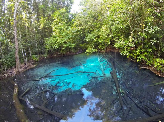 Krabi Nature View Guesthouse: blue pool