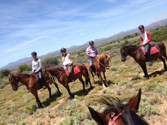 Kango Horse Riding: Great outrides with great people