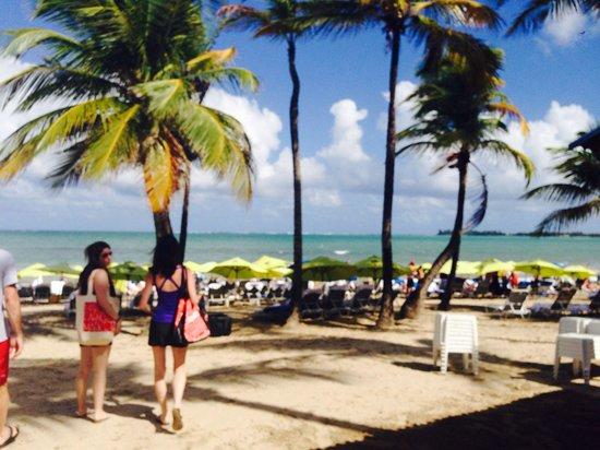 The Ritz-Carlton, San Juan: Beach