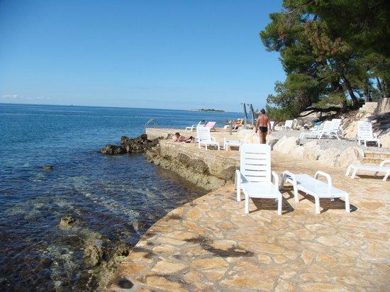 Hotel Laguna Parentium: The beach of the hotel