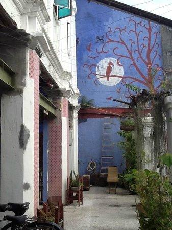 100 Cintra Street: la terrasse