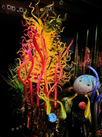 Chihuly Collection: Polarized effect on a phone to make it pop