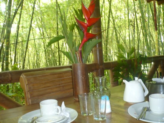 Bosques Del Saman - Alcala: servicio a la habitacion