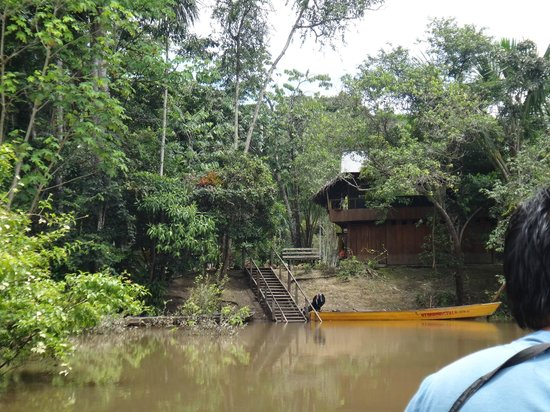 Otorongo Expeditions Jungle Lodge: the lodge from the river