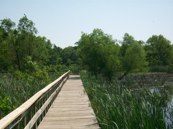 Mary K. Oxley Nature Center: Walkway to Recreation Lake