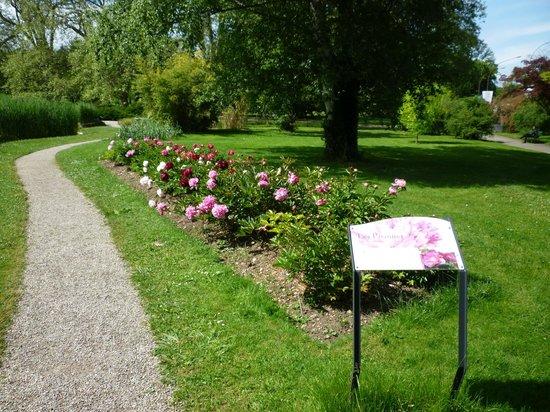 Conservatory and Botanical Garden of the City of Geneva(Conservatoire et Jardin botaniques de la Ville de Geneve): Conservatory and Botanical Garden of the City of Geneva