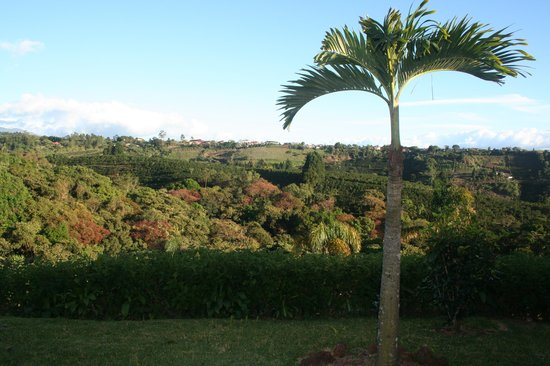 Hotel Mango Valley: The view from our porch