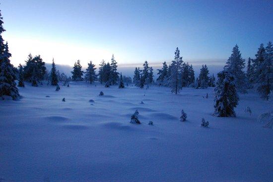 Lapland Hotel Pallas : Winterwonder Land