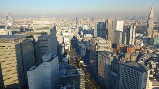 Park Hyatt Tokyo: Looking East, 44th floor.