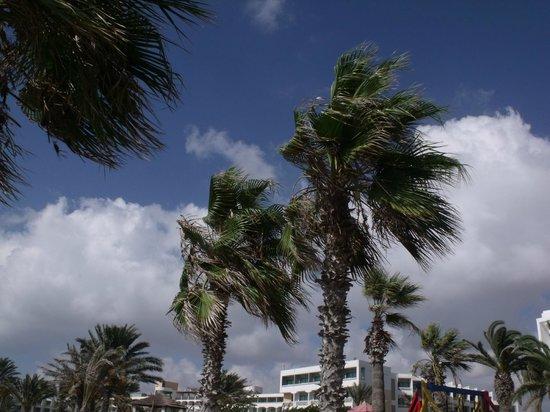 Louis Ledra Beach : View from the beach