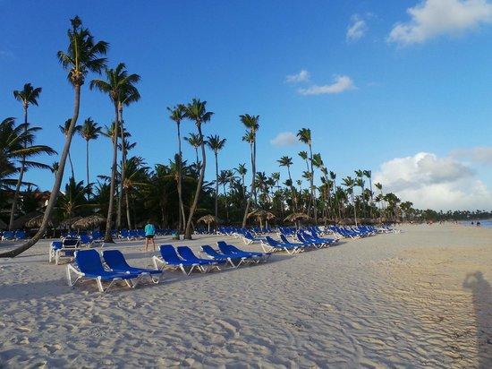 Occidental Punta Cana: Playa del hotel