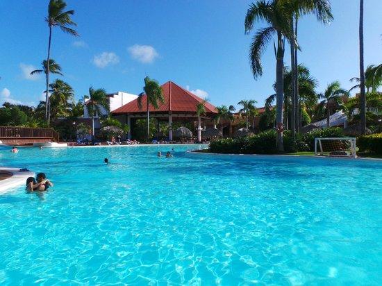 Occidental Punta Cana: Pileta