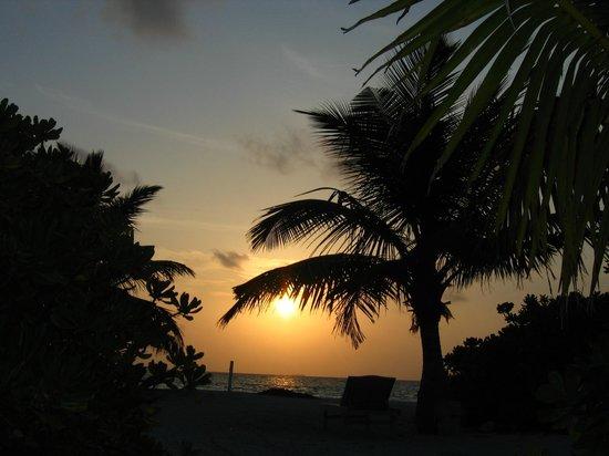 Fun Island Resort : Отель