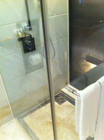 Lotte Hotel Seoul: Shower