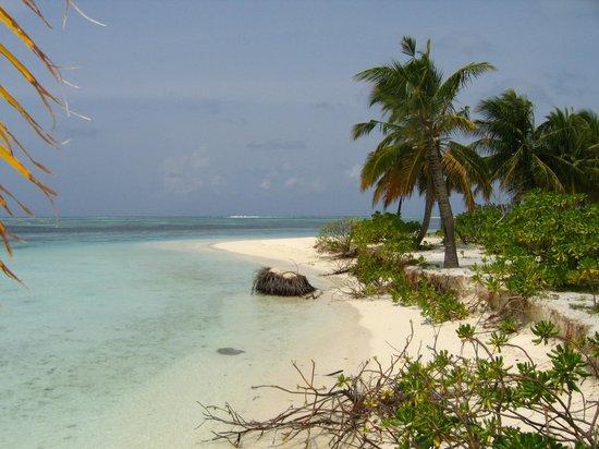 Fun Island Resort : Пляж