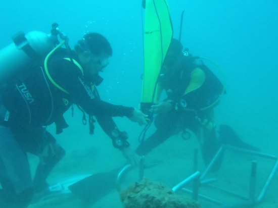 Diwa Dominicana: Moises and I, Search and Recovery