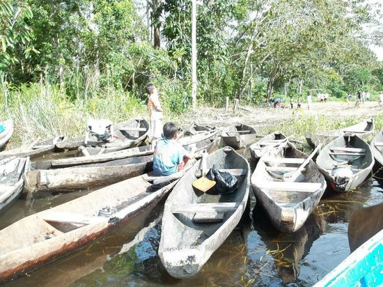 Amazonia Expeditions' Tahuayo Lodge: A daytrip to meet local tribes