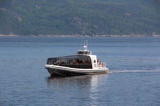 Les Croisières du Fjord : Protégé meme par mauvais temps