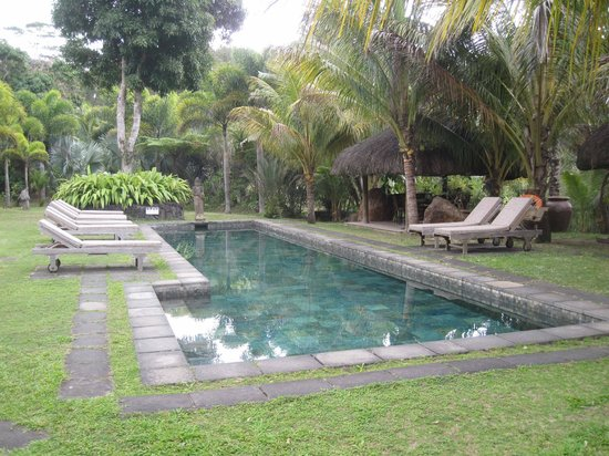 Lakaz Chamarel Exclusive Lodge : The hotel pool