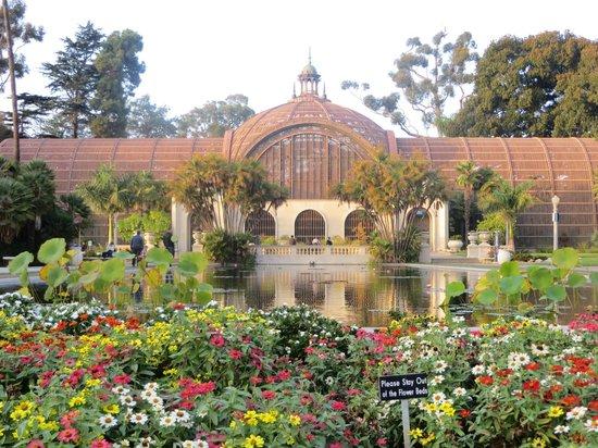 Beautiful Plants Picture Of Balboa Park San Diego Tripadvisor