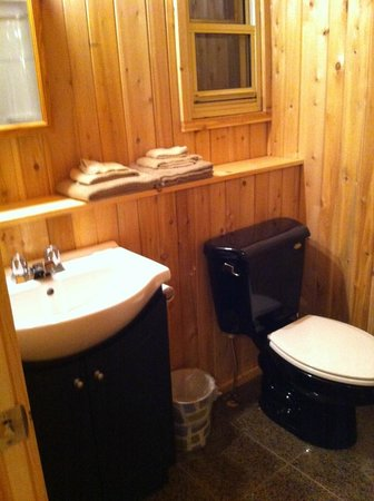 Hidden Valley Motel: Clean washroom with newer tub and fixtures.