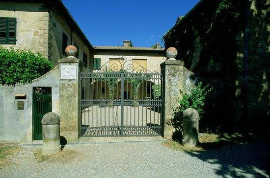 Casa Sola - Chianti Winery: Indgangen