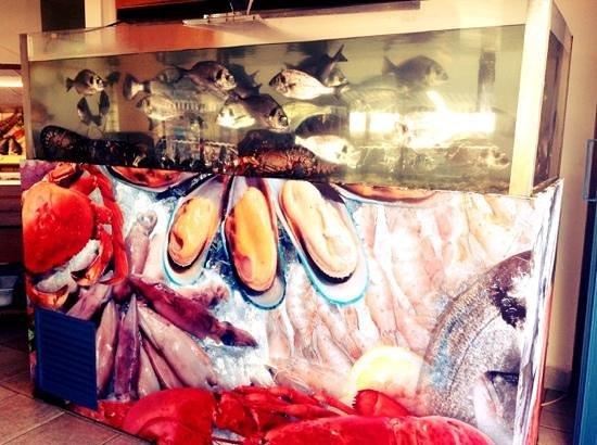 Restaurante Mar Azul : delicious typical fish:Dourada