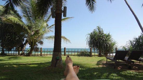 Portofino Resort Tangalle : Бассейн/пляж