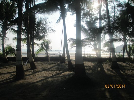 Subhan Beach Resort: View from Room