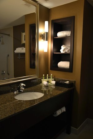 Holiday Inn Express Hotel & Suites Kingston: Il bagno