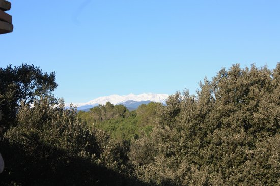 Mas Tarasco: vue sur le Canigou