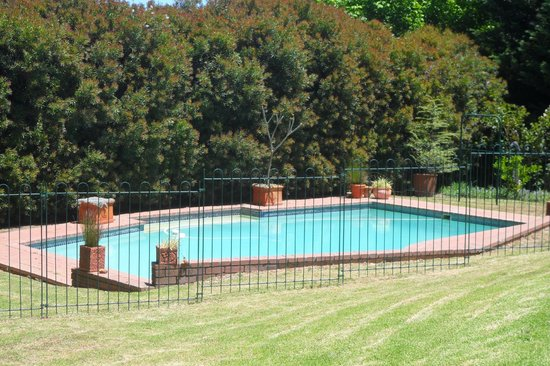 Golden Hill Guest House & Tours: Pool