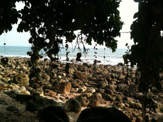 "Koh Talu Island Resort: ""Coral-Beach"""