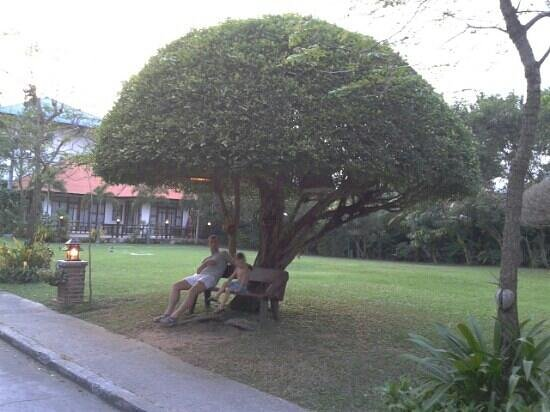 Natural Park Resort: natural park