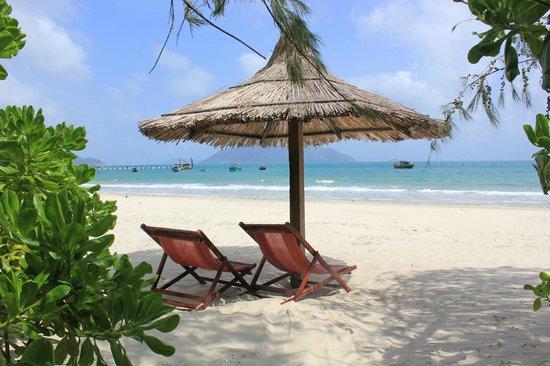 Con Dao Seatravel Resort: Каждому домику по зонту и шезлонгу!