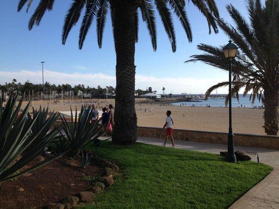 Barcelo Castillo Beach Resort : Vu sur la plage depuis le complexe