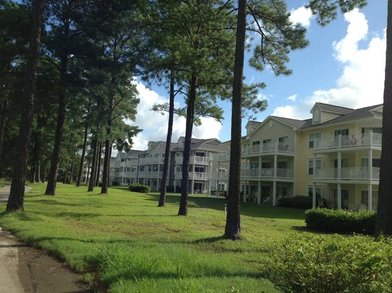 Brunswick Plantation Golf Resort : View of condos from the golf course/cart path