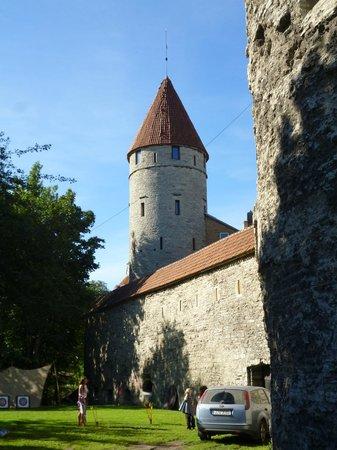 Hestia Hotel Ilmarine: Typical tower