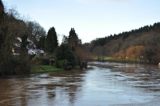 Forest View Guest House: View of river Wye